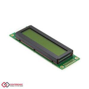 LCD 2X20 G
